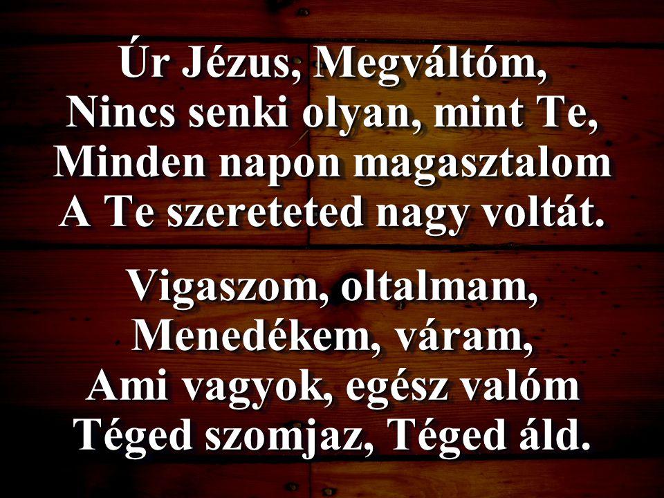 Úr Jézus, Megváltóm, Nincs senki olyan, mint Te, Minden napon magasztalom A Te szereteted nagy voltát. Vigaszom, oltalmam, Menedékem, váram, Ami vagyo