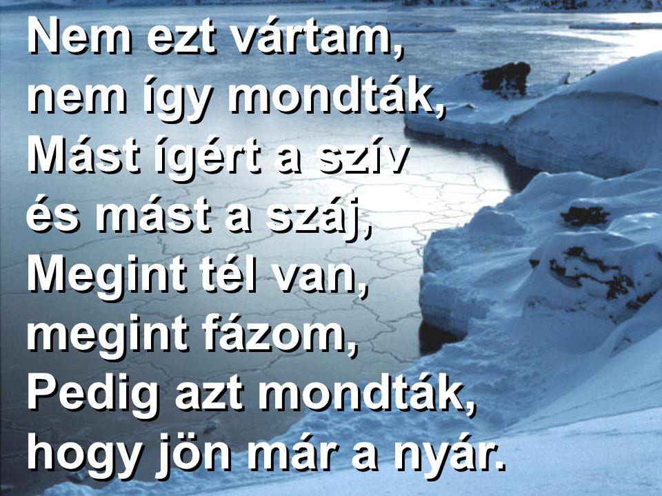 Nem ezt vártam, nem így mondták, Mást ígért a szív és mást a száj, Megint tél van, megint fázom, Pedig azt mondták, hogy jön már a nyár.