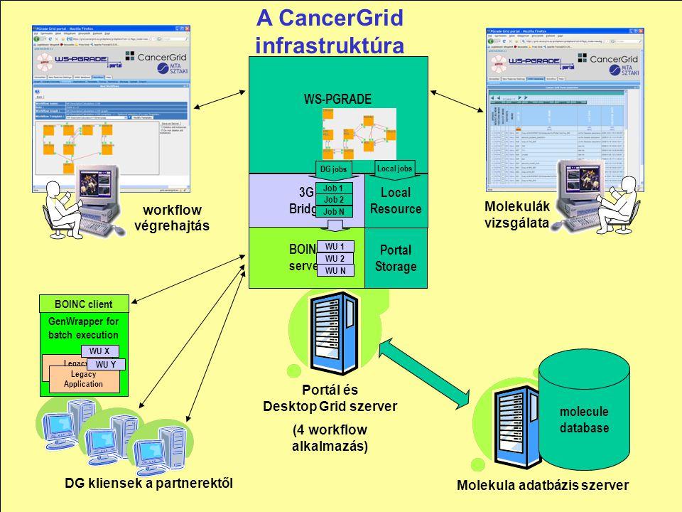 20 molecule database workflow végrehajtás Molekulák vizsgálata DG kliensek a partnerektől Molekula adatbázis szerver Portál és Desktop Grid szerver (4 workflow alkalmazás) BOINC server 3G Bridge WS-PGRADE Portal DG jobs WU 1 WU 2 WU N Job 1 Job 2 Job N GenWrapper for batch execution BOINC client Legacy Application Portal Storage Local Resource Local jobs Legacy Application WU X WU Y A CancerGrid infrastruktúra