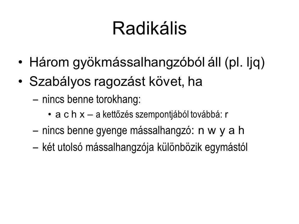 Radikális Három gyökmássalhangzóból áll (pl. ljq) Szabályos ragozást követ, ha –nincs benne torokhang: a c h x – a kettőzés szempontjából továbbá: r –