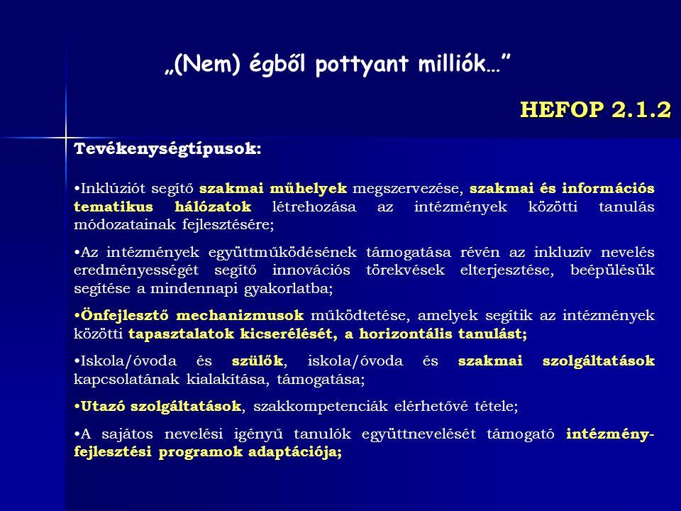 HEFOP 2.1.2 Tevékenységtípusok: Inklúziót segítő szakmai műhelyek megszervezése, szakmai és információs tematikus hálózatok létrehozása az intézmények