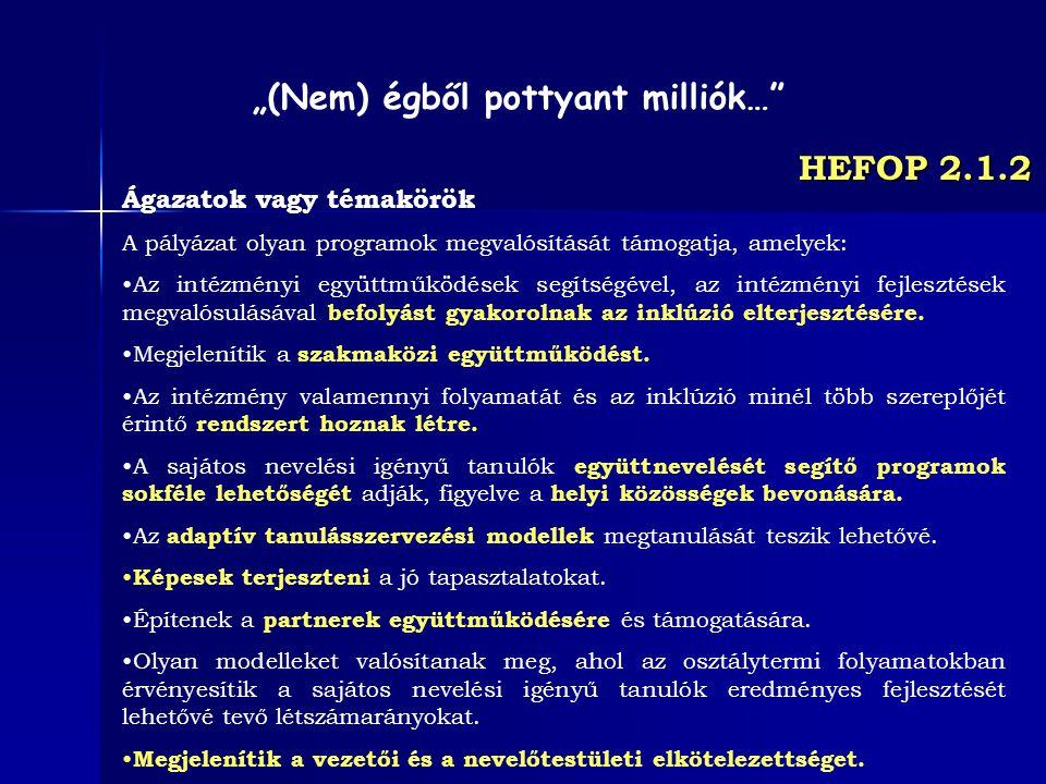 HEFOP 2.1.2 Ágazatok vagy témakörök A pályázat olyan programok megvalósítását támogatja, amelyek: Az intézményi együttműködések segítségével, az intéz