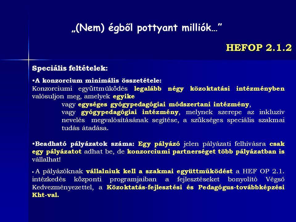 HEFOP 2.1.2 Speciális feltételek: A konzorcium minimális összetétele: Konzorciumi együttműködés legalább négy közoktatási intézményben valósuljon meg,