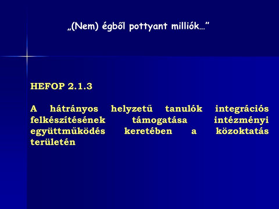 """HEFOP 2.1.3 A hátrányos helyzetű tanulók integrációs felkészítésének támogatása intézményi együttműködés keretében a közoktatás területén """"(Nem) égből"""