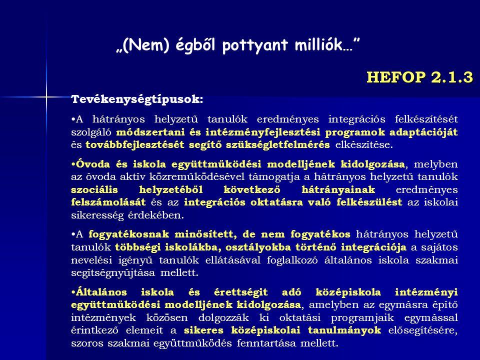 HEFOP 2.1.3 Tevékenységtípusok: A hátrányos helyzetű tanulók eredményes integrációs felkészítését szolgáló módszertani és intézményfejlesztési program