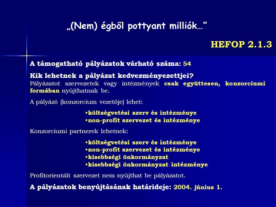 HEFOP 2.1.3 A támogatható pályázatok várható száma: 54 Kik lehetnek a pályázat kedvezményezettjei? Pályázatot szervezetek vagy intézmények csak együtt