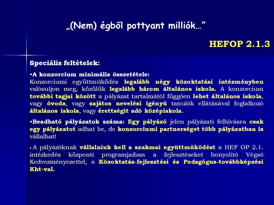 HEFOP 2.1.3 Speciális feltételek: A konzorcium minimális összetétele: Konzorciumi együttműködés legalább négy közoktatási intézményben valósuljon meg,