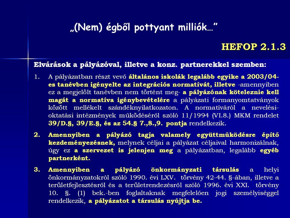 HEFOP 2.1.3 Elvárások a pályázóval, illetve a konz. partnerekkel szemben: 1.A pályázatban részt vevő általános iskolák legalább egyike a 2003/04- es t
