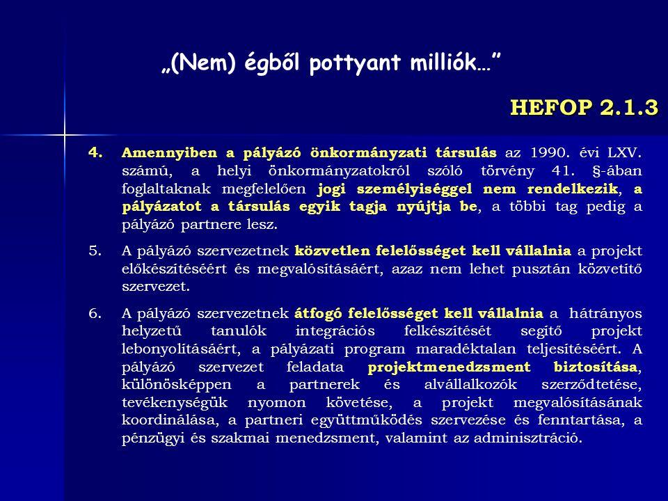 HEFOP 2.1.3 4.Amennyiben a pályázó önkormányzati társulás az 1990. évi LXV. számú, a helyi önkormányzatokról szóló törvény 41. §-ában foglaltaknak meg