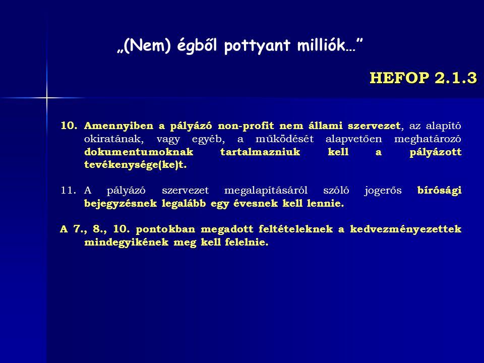 HEFOP 2.1.3 10.Amennyiben a pályázó non-profit nem állami szervezet, az alapító okiratának, vagy egyéb, a működését alapvetően meghatározó dokumentumo