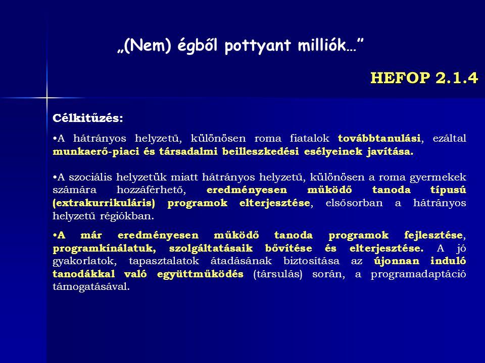 HEFOP 2.1.4 Célkitűzés: A hátrányos helyzetű, különösen roma fiatalok továbbtanulási, ezáltal munkaerő-piaci és társadalmi beilleszkedési esélyeinek j