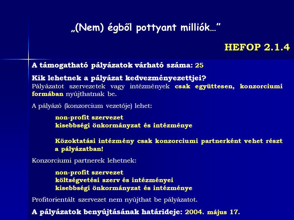 HEFOP 2.1.4 A támogatható pályázatok várható száma: 25 Kik lehetnek a pályázat kedvezményezettjei? Pályázatot szervezetek vagy intézmények csak együtt