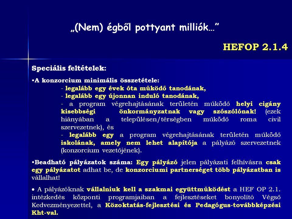 HEFOP 2.1.4 Speciális feltételek: A konzorcium minimális összetétele: - legalább egy évek óta működő tanodának, - legalább egy újonnan induló tanodána