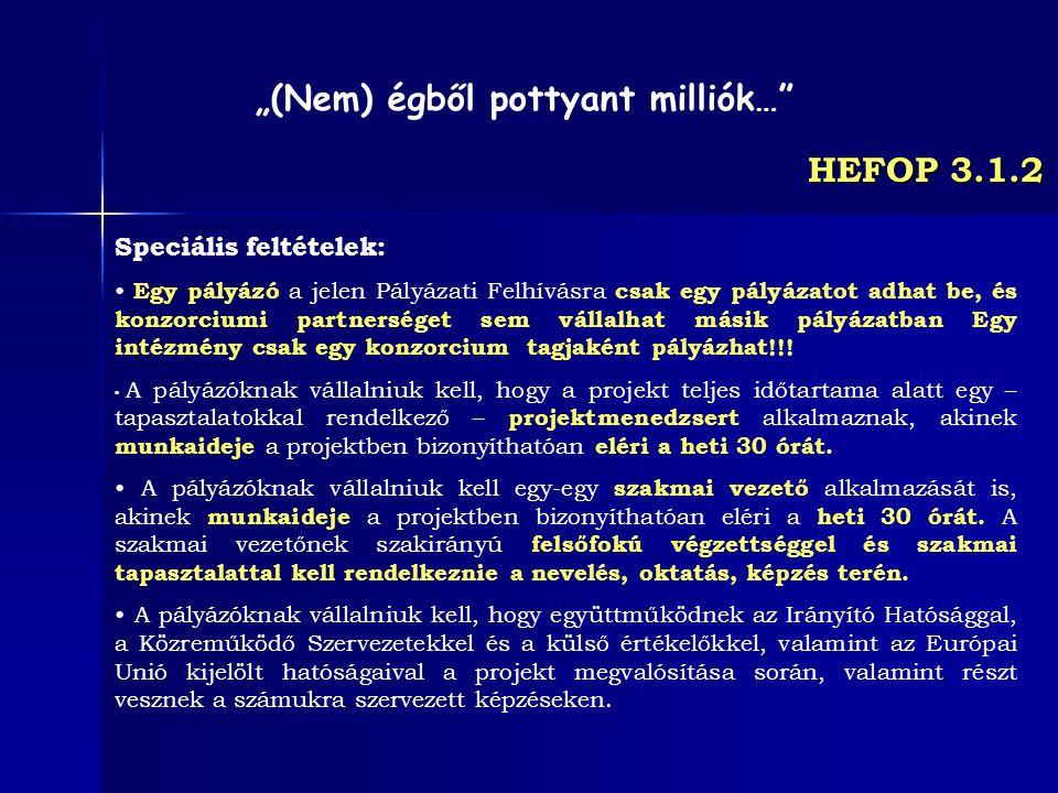 HEFOP 3.1.2 Speciális feltételek: Egy pályázó a jelen Pályázati Felhívásra csak egy pályázatot adhat be, és konzorciumi partnerséget sem vállalhat más