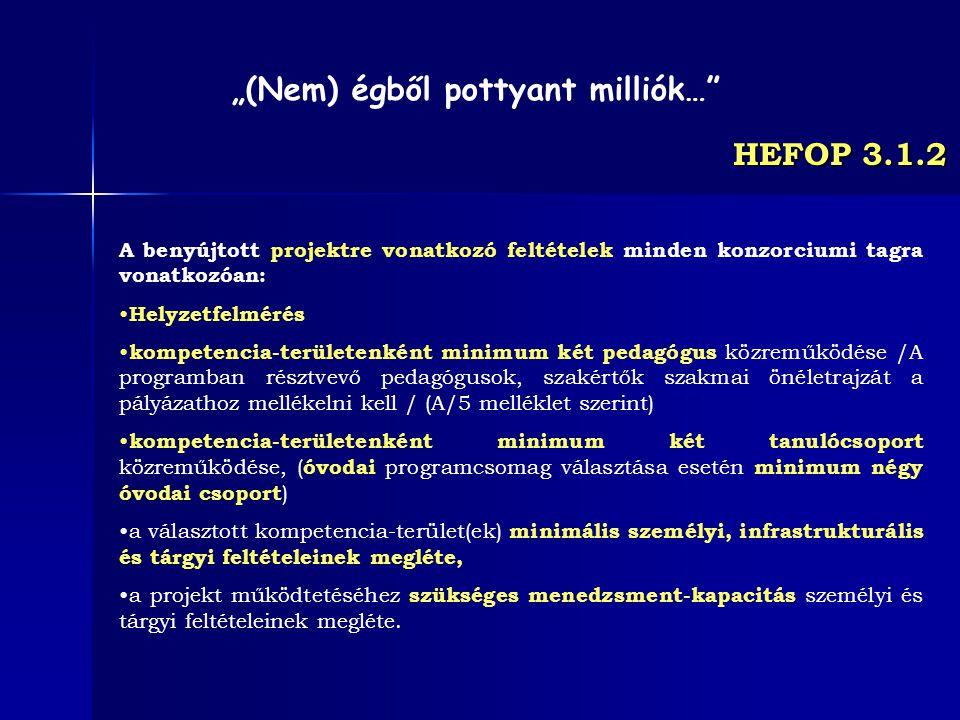 HEFOP 3.1.2 A benyújtott projektre vonatkozó feltételek minden konzorciumi tagra vonatkozóan: Helyzetfelmérés kompetencia-területenként minimum két pe