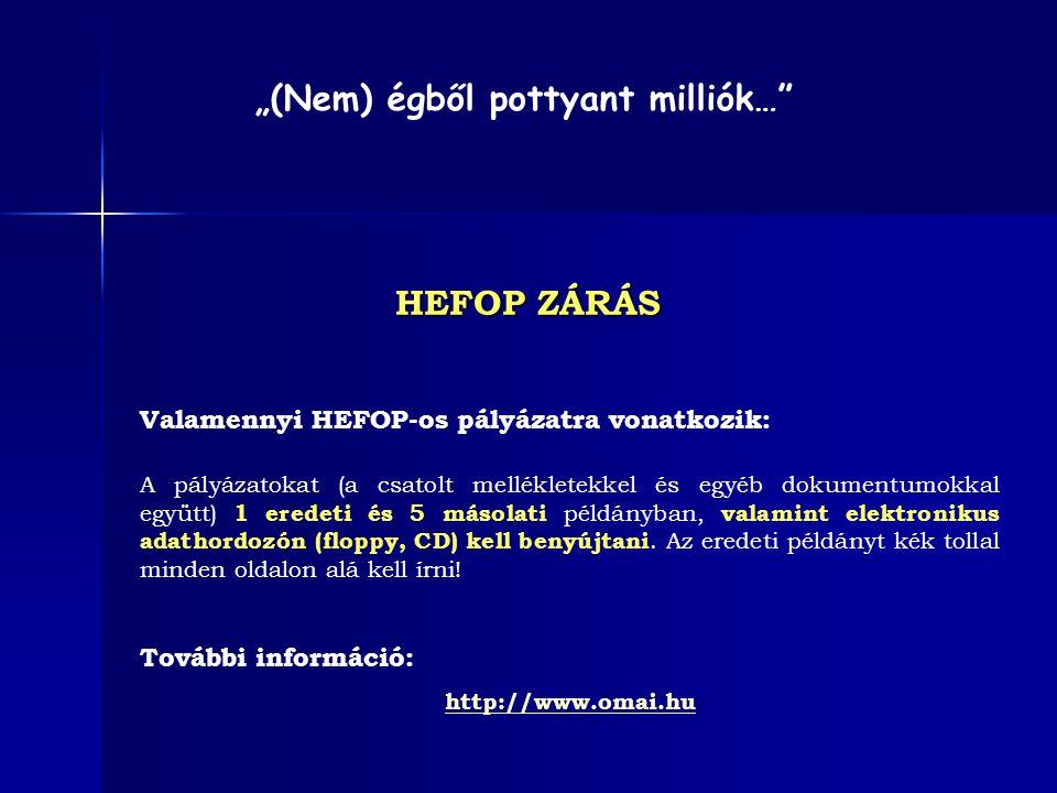 Valamennyi HEFOP-os pályázatra vonatkozik: A pályázatokat (a csatolt mellékletekkel és egyéb dokumentumokkal együtt) 1 eredeti és 5 másolati példányba