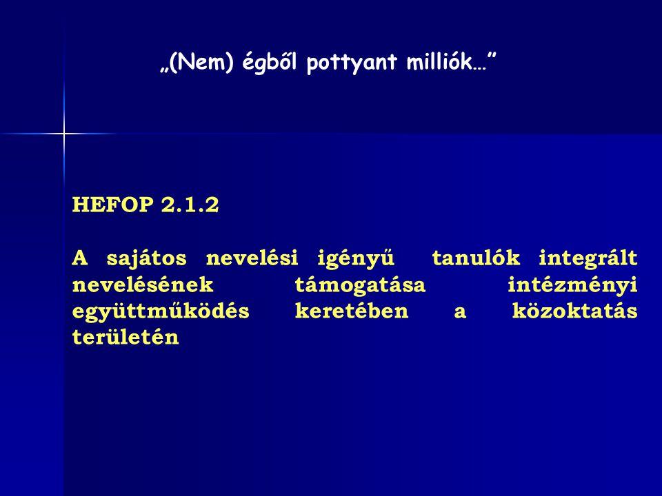 HEFOP 2.1.2 Elvárások a pályázóval, illetve a konz.