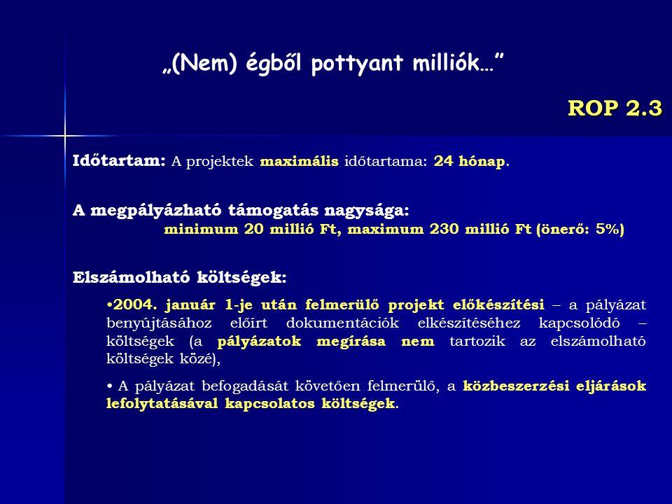 ROP 2.3 Időtartam: A projektek maximális időtartama: 24 hónap. A megpályázható támogatás nagysága: minimum 20 millió Ft, maximum 230 millió Ft (önerő: