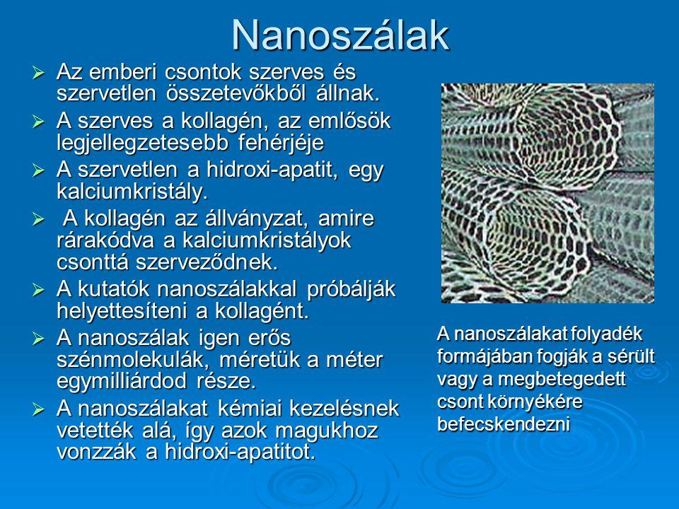 Nanoszálak  Az emberi csontok szerves és szervetlen összetevőkből állnak.  A szerves a kollagén, az emlősök legjellegzetesebb fehérjéje  A szervetl
