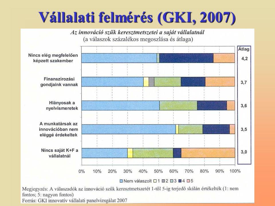 Vállalati felmérés (GKI, 2007)