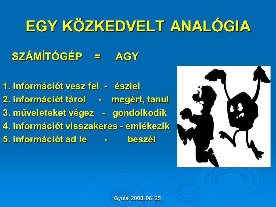 Gyula, 2008. 06. 25. EGY KÖZKEDVELT ANALÓGIA SZÁMÍTÓGÉP = AGY SZÁMÍTÓGÉP = AGY 1. információt vesz fel - észlel 2. információt tárol - megért, tanul 3
