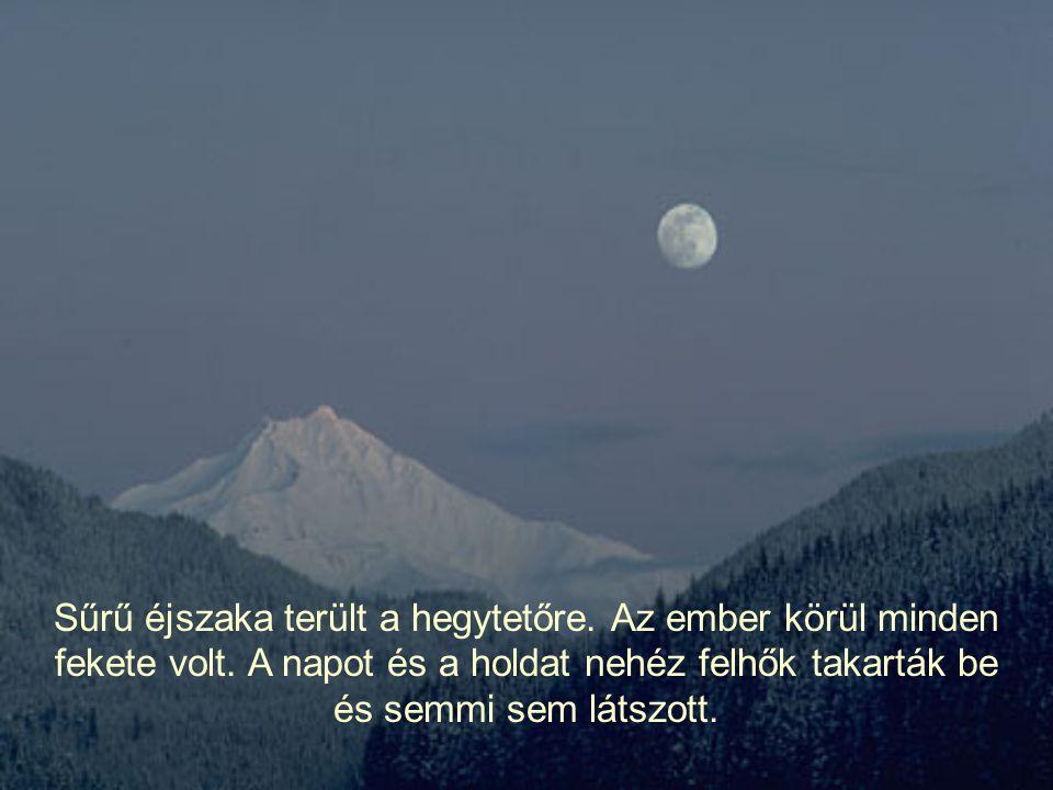 Sűrű éjszaka terült a hegytetőre.Az ember körül minden fekete volt.