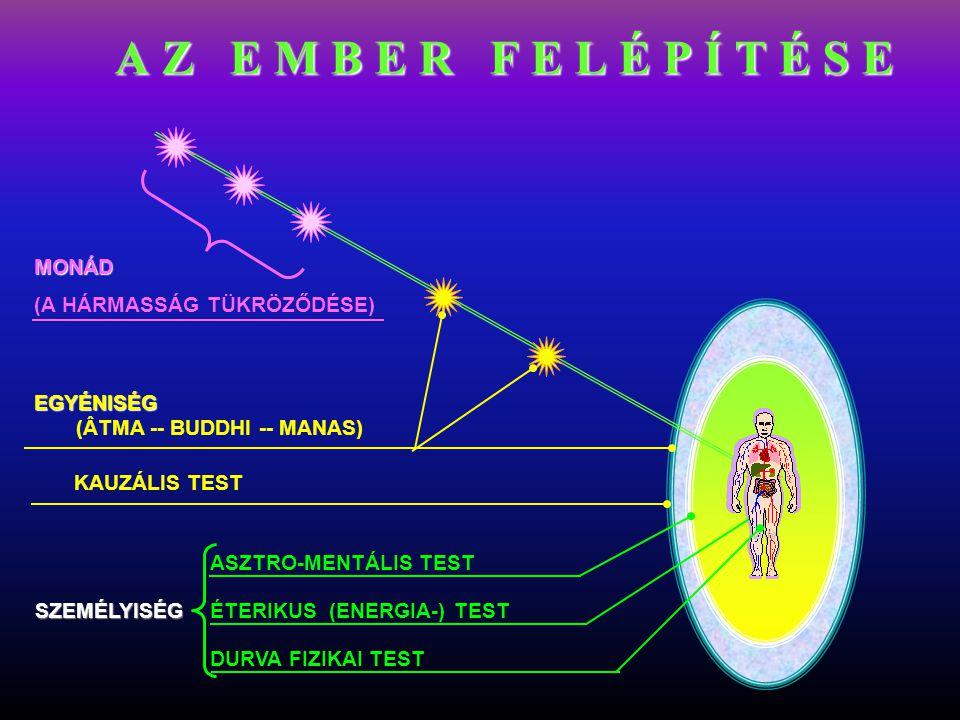 DURVA FIZIKAI TEST ÉTERIKUS (ENERGIA-) TEST ASZTRO-MENTÁLIS TEST KAUZÁLIS TEST EGYÉNISÉG EGYÉNISÉG (ÂTMA -- BUDDHI -- MANAS) MONÁD (A HÁRMASSÁG TÜKRÖZ