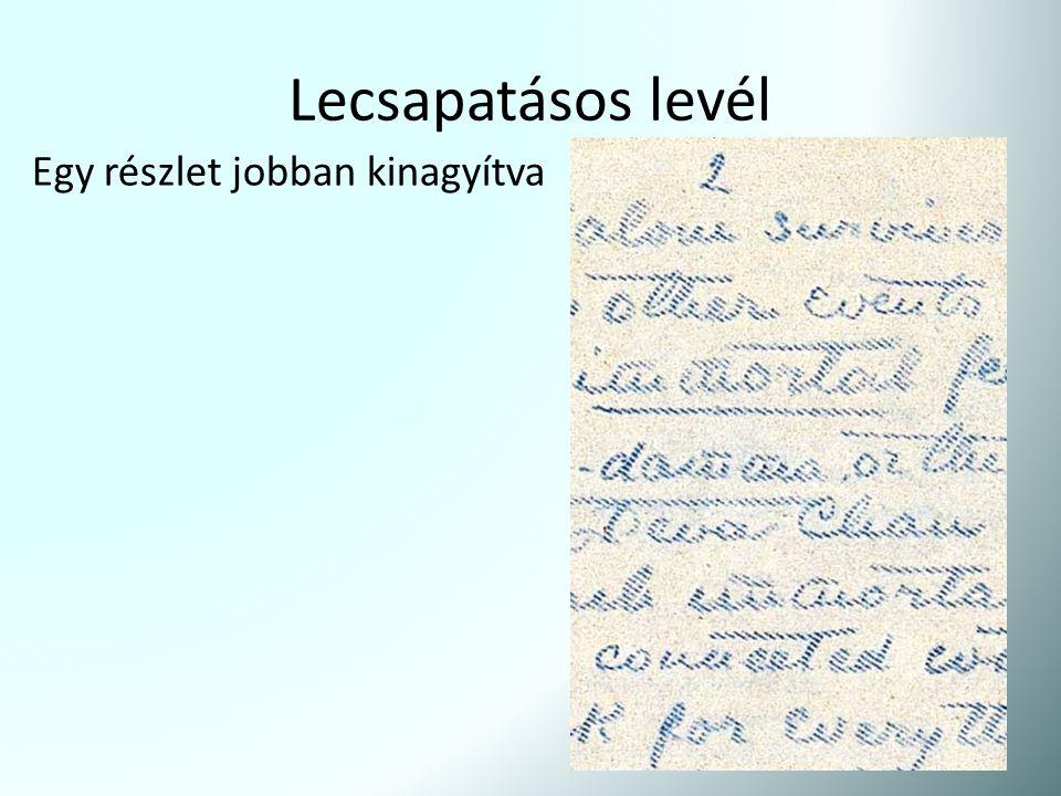 Lecsapatásos levél Egy részlet jobban kinagyítva