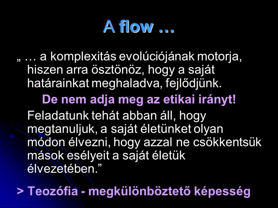 """A flow … """" … a komplexitás evolúciójának motorja, hiszen arra ösztönöz, hogy a saját határainkat meghaladva, fejlődjünk. De nem adja meg az etikai irá"""