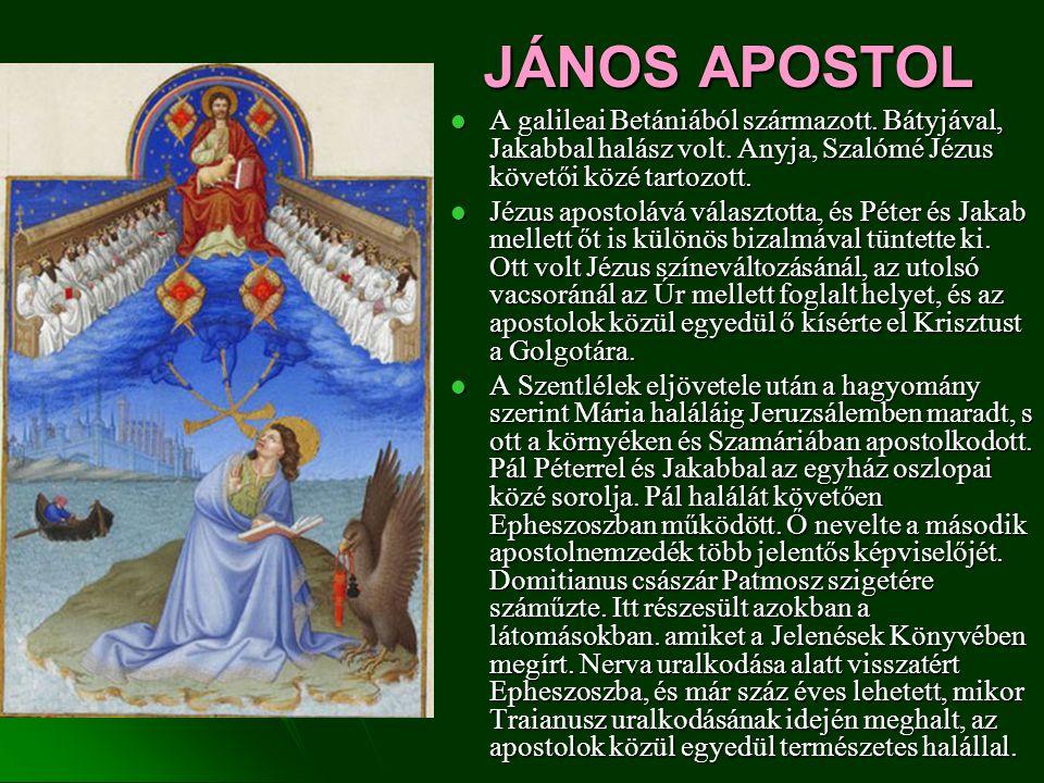 JÁNOS APOSTOL A galileai Betániából származott. Bátyjával, Jakabbal halász volt. Anyja, Szalómé Jézus követői közé tartozott. A galileai Betániából sz