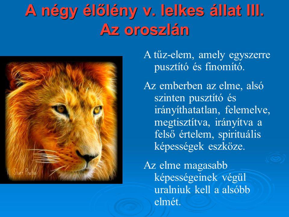 A négy élőlény v. lelkes állat III. Az oroszlán A tűz-elem, amely egyszerre pusztító és finomító. Az emberben az elme, alsó szinten pusztító és irányí