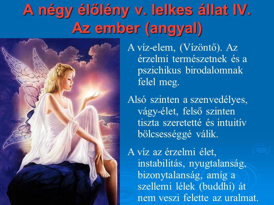 A négy élőlény v. lelkes állat IV. Az ember (angyal) A víz-elem, (Vízöntő). Az érzelmi természetnek és a pszichikus birodalomnak felel meg. Alsó szint