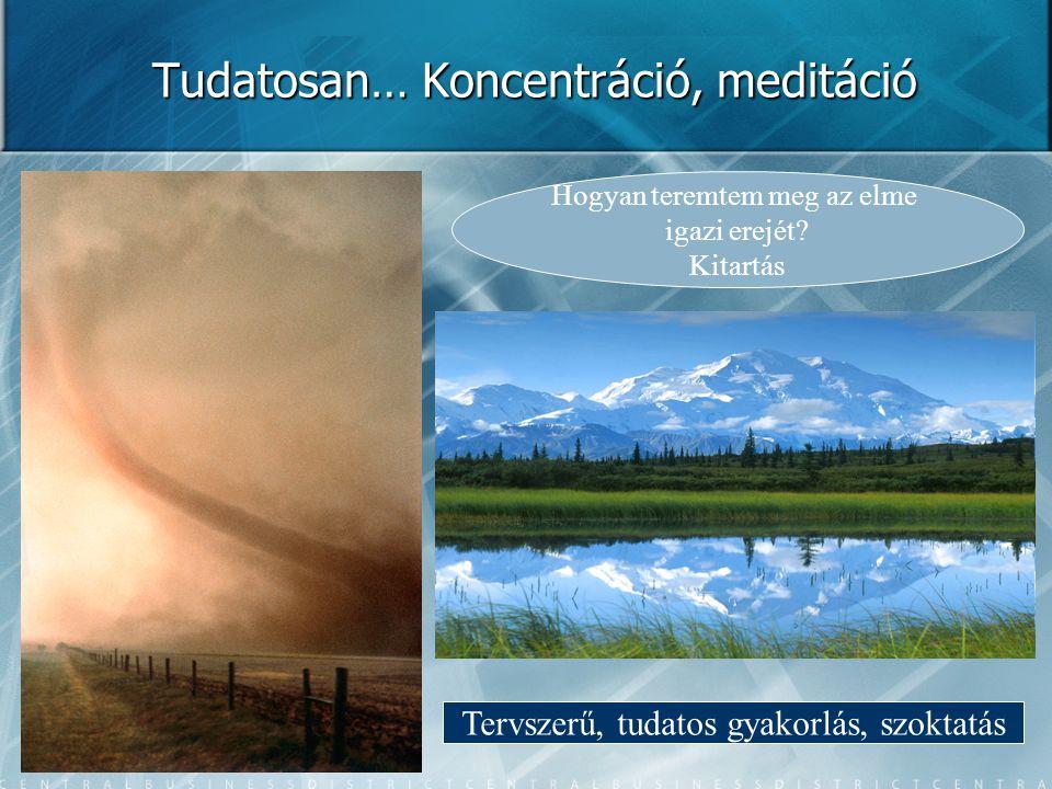 Tudatosan… Koncentráció, meditáció Hogyan teremtem meg az elme igazi erejét.