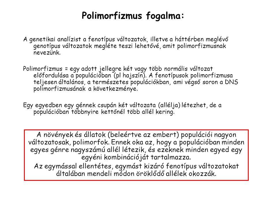 A genetikai analízist a fenotípus változatok, illetve a háttérben meglévő genotípus változatok megléte teszi lehetővé, amit polimorfizmusnak nevezünk.
