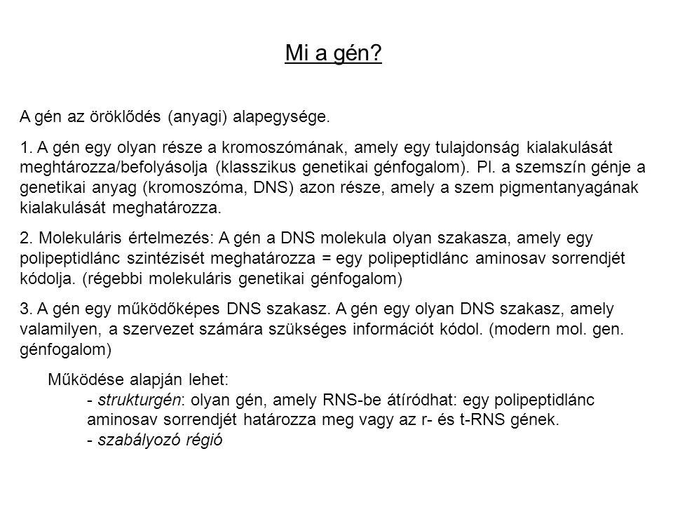 Mi a gén.A gén az öröklődés (anyagi) alapegysége.