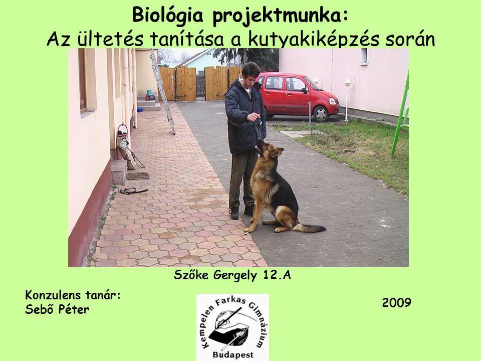 Biológia projektmunka: Az ültetés tanítása a kutyakiképzés során Szőke Gergely 12.A Konzulens tanár: Sebő Péter 2009