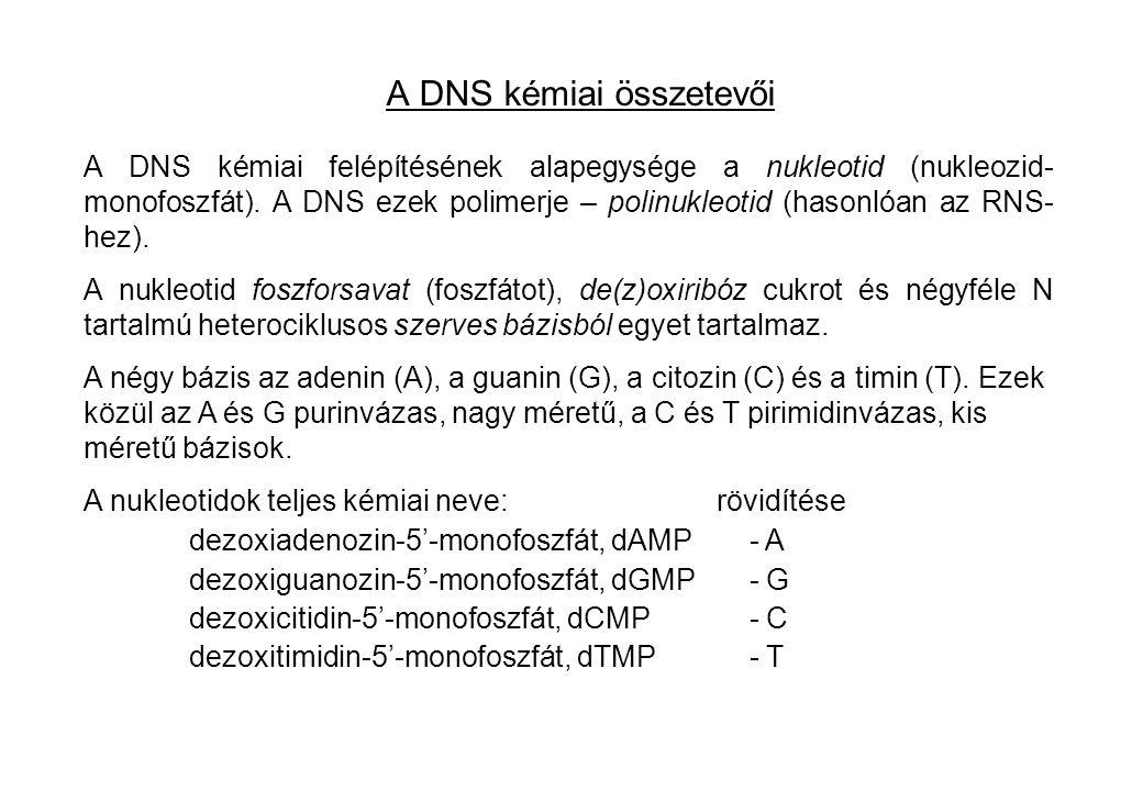 A DNS kémiai összetevői A DNS kémiai felépítésének alapegysége a nukleotid (nukleozid- monofoszfát). A DNS ezek polimerje – polinukleotid (hasonlóan a