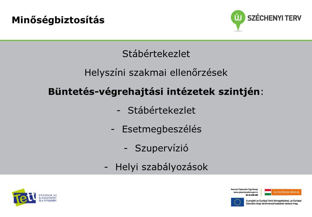 Stábértekezlet Helyszíni szakmai ellenőrzések Büntetés-végrehajtási intézetek szintjén: -Stábértekezlet -Esetmegbeszélés -Szupervízió -Helyi szabályoz