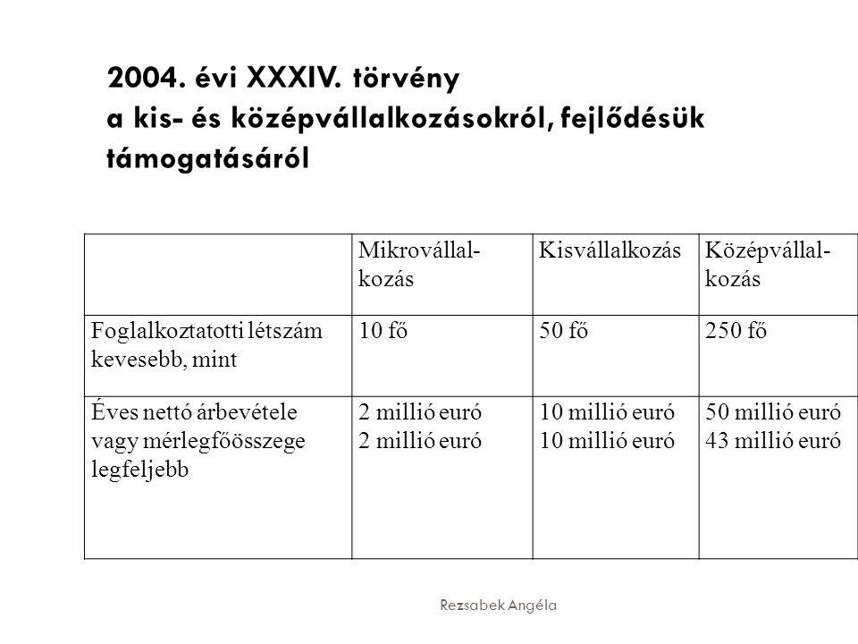 Rezsabek Angéla Mikrovállal- kozás KisvállalkozásKözépvállal- kozás Foglalkoztatotti létszám kevesebb, mint 10 fő50 fő250 fő Éves nettó árbevétele vagy mérlegfőösszege legfeljebb 2 millió euró 10 millió euró 50 millió euró 43 millió euró 2004.