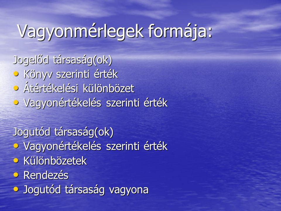 Jogutód VMT könyvvizsgálata: Az Szvt.