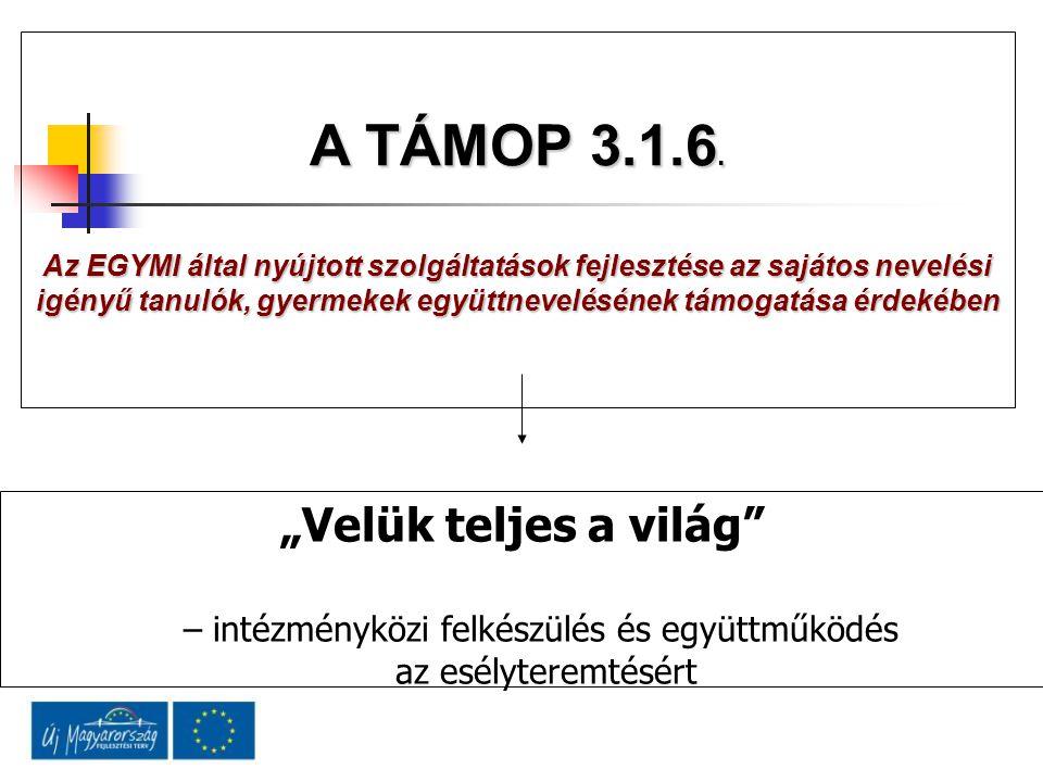 """""""Velük teljes a világ – intézményközi felkészülés és együttműködés az esélyteremtésért A TÁMOP 3.1.6."""