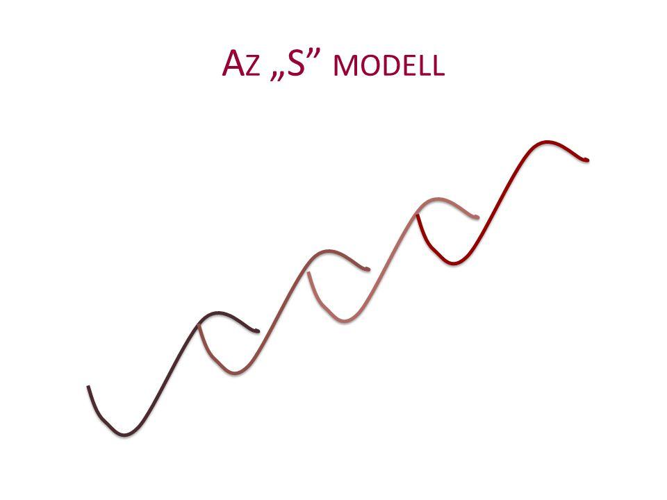 """A Z """"S"""" MODELL"""