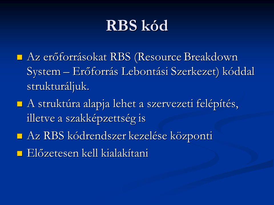 RBS kód Az erőforrásokat RBS (Resource Breakdown System – Erőforrás Lebontási Szerkezet) kóddal strukturáljuk.