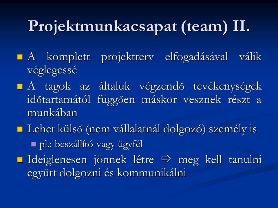 Projektmunkacsapat (team) II.