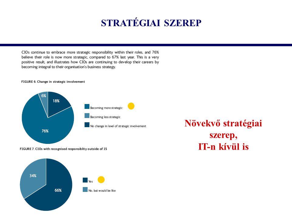 STRATÉGIAI SZEREP Növekvő stratégiai szerep, IT-n kívül is
