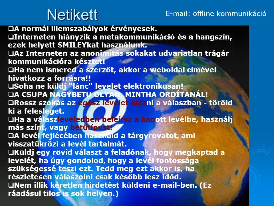 Netikett Chat : online kommunikáció Tisztában kell lenned azzal, hogy a chat feltartja a másik embert.