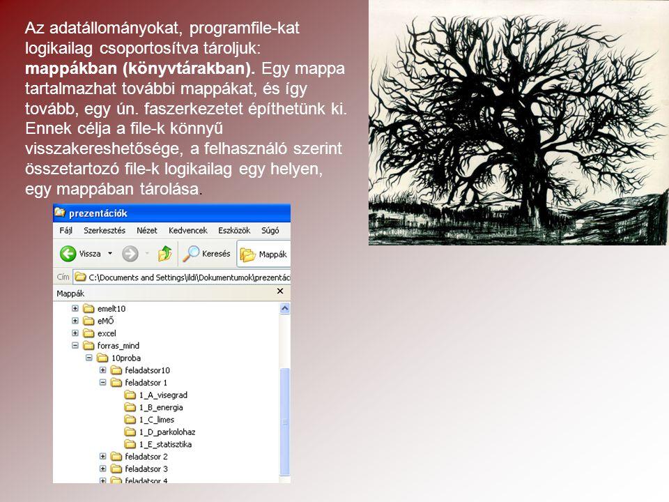 Az adatállományokat, programfile-kat logikailag csoportosítva tároljuk: mappákban (könyvtárakban).