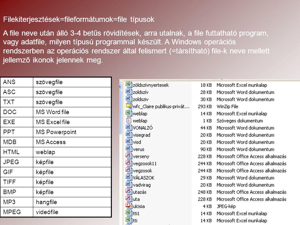 Filekiterjesztések=fileformátumok=file típusok A file neve után álló 3-4 betűs rövidítések, arra utalnak, a file futtatható program, vagy adatfile, milyen típusú programmal készült.