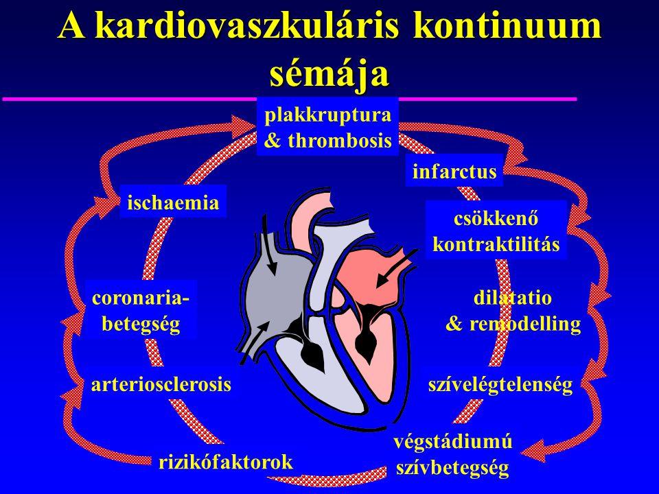 A kardiovaszkuláris kontinuum sémája rizikófaktorok arteriosclerosis coronaria- betegség ischaemia plakkruptura & thrombosis infarctus csökkenő kontra