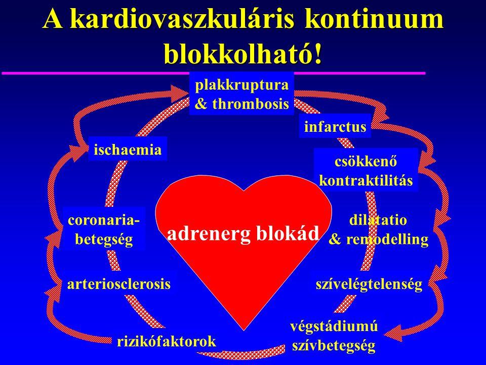 A kardiovaszkuláris kontinuum blokkolható! rizikófaktorok arteriosclerosis coronaria- betegség ischaemia plakkruptura & thrombosis infarctus csökkenő